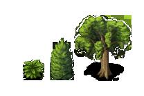 PlantTiles
